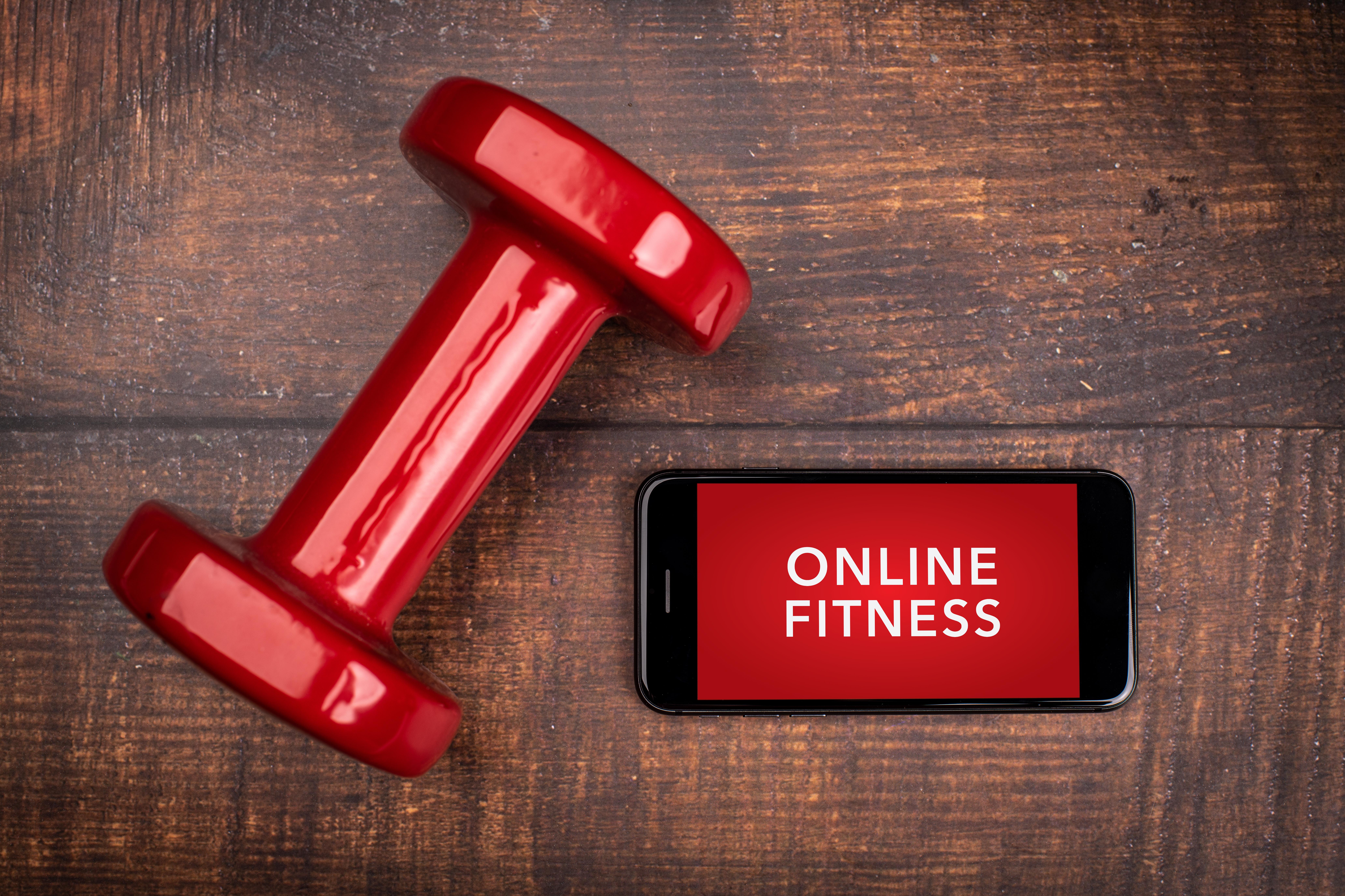 David Todd Fitness 12 Week Online fitness program